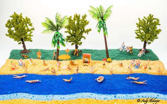 Urlaub am Schwammstrand